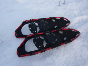 mountain snow shoes
